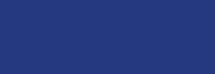 CSI Header logo